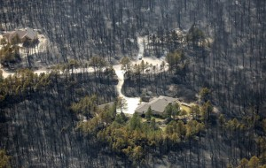 A house sits undamaged in the aftermath of the Black Forest Fire in Black Forest, Colorado