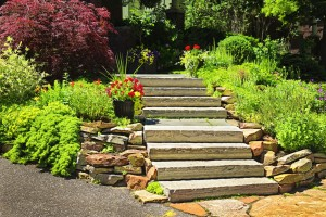 best tips for landscaping your yard this summer